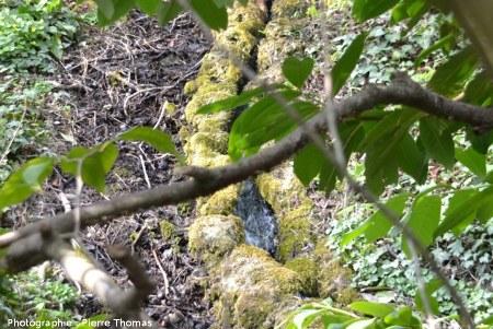 Un émissaire au NE du bassin appelé la Bouture, zoom sur les mini-digues de travertin