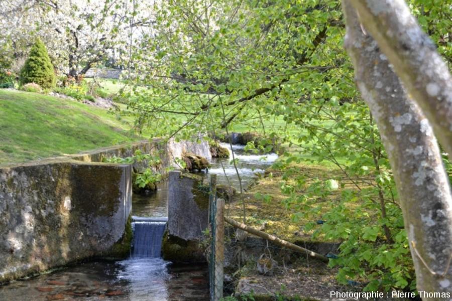 Petit canal à l'aval de l'exutoire SO du bassin dit la Bouture