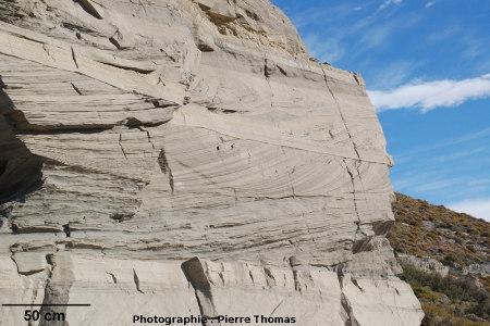 Molasse oligo-miocène du pied de la Cordillière des Andes, Patagonie (Argentine