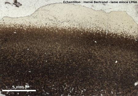 Cortex vitreux (pillow lava) en lame mince (LPNA)
