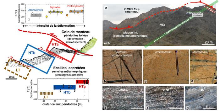 Déformations enregistrées à la base du manteau ophiolitique