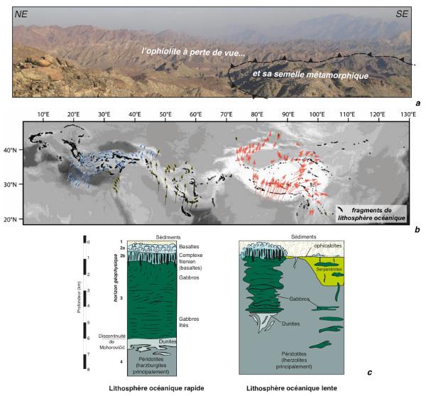 Ophiolites et modèles de lithosphères océaniques
