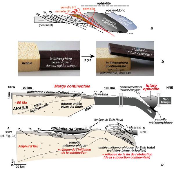 Ophiolite et obduction, dispositif tectonique théorique