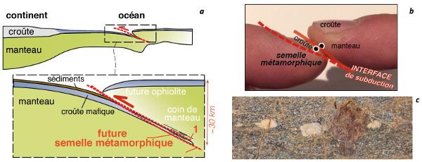 Subduction et semelles métamorphiques