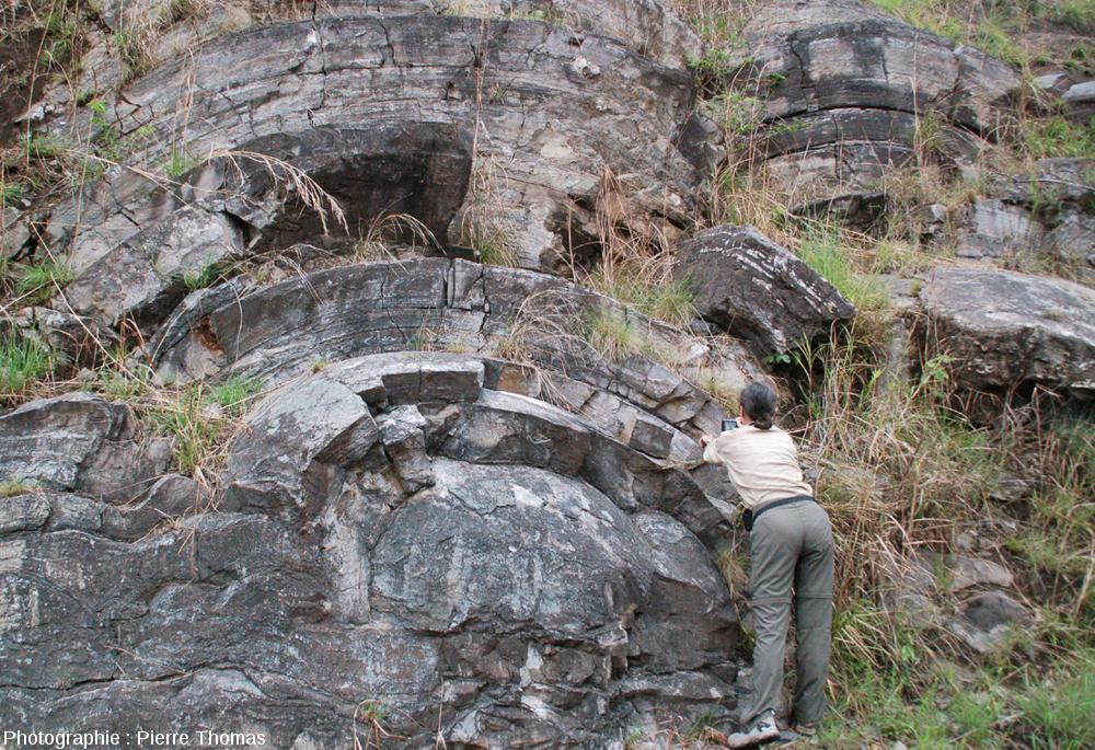 Exemple de marqueur morphologique prouvant l'existence d'une vie ancienne: des stromatolithes de belle taille (ici en Afrique du Sud) datant d'environ -3Ga