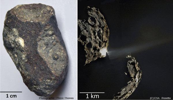 Chondrites carbonées et comètes, deux sources de molécules organiques