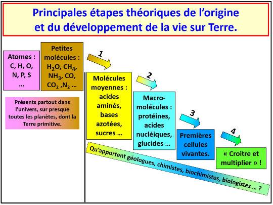 Les principales étapes théoriques de l'origine et du développement de la vie sur Terre