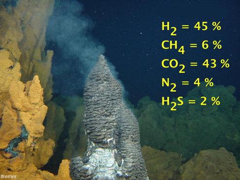 Composition des fluides s'échappant d'une source hydrothermale sur le champ hydrothermal Rainbow, champ hydrothermal sur fond péridotitique au niveau de la dorsale au Sud des Açores (Atlantique)