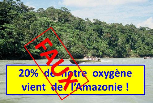 En Amazonie, sur le bord du Rio Napo (Équateur), support photo d'une affirmation courante mais fausse!