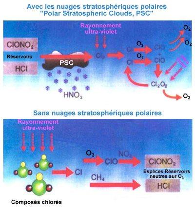 Schémas synthétiques décrivant la chimie de la destruction de l'ozone