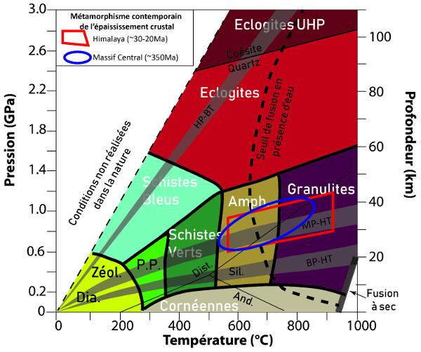 Comparaison des conditions métamorphiques contemporaines de l'épaississement crustal en Himalaya et dans le Massif Central (lors de l'orogenèse hercynienne)
