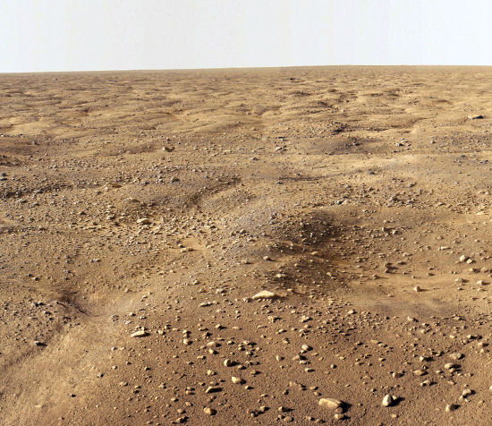 Sols polygonaux des régions péri-polaires de Mars
