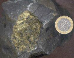 Une enclave de péridotite dans un basalte