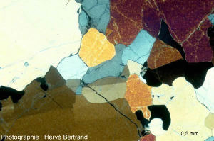 Péridotite à spinelle du maar de Borée (Velay, Ardèche), LPA