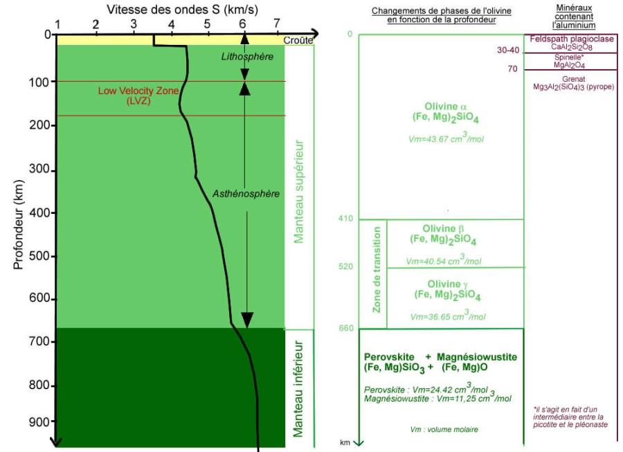 Variation de la vitesse des ondes sismiques S en fonction de la profondeur et changements minéralogiques dans le manteau