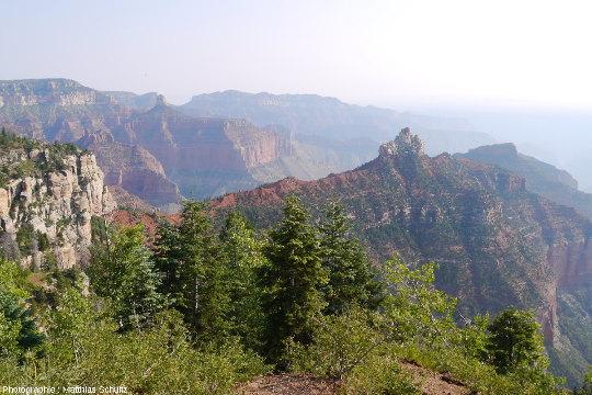 Panorama en direction du Sud-Est du Grand Canyon pris depuis la rive Nord (secteur de Cape Royal)