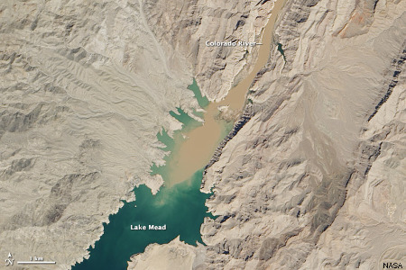 Image satellite de mars 2013 montrant les eaux turbides du Colorado se déversant dans le lac Mead, issu de l'implantation du barrage Hoover, en aval du Grand Canyon