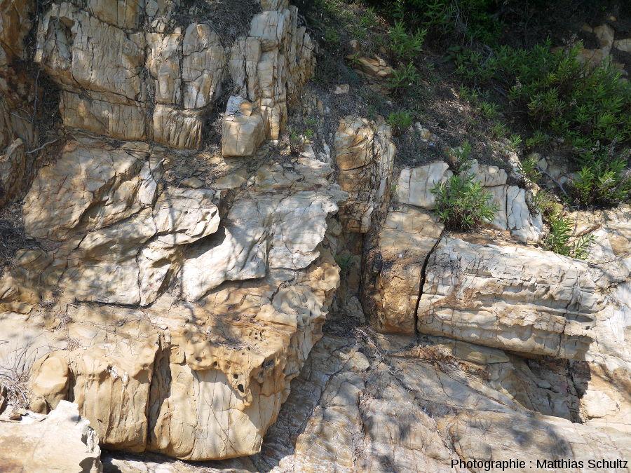 Niveau gréseux dans les phyllades sur le littoral près de Brégançon