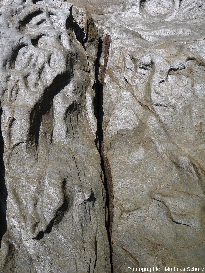 Niveau schisteux dans les phyllades sur le littoral près de Brégançon