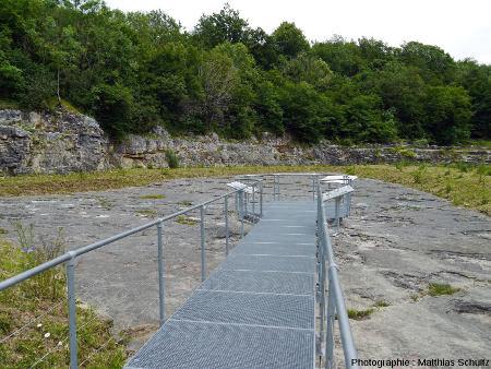 Vue d'ensemble de l'affleurement principal de Loulle (Jura) portant des empreintes de Sauropodes