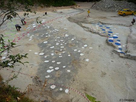 Vue générale de plusieurs surfaces à empreintes exhumées lors des fouilles du site de Loulle (Jura)