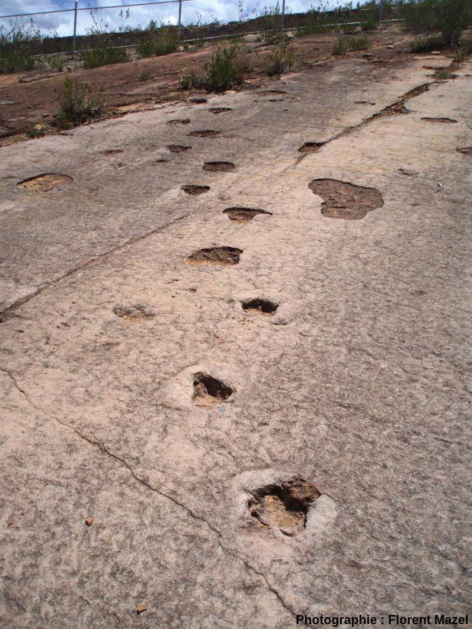 Piste de dinosaure dans le synclinal de Torotoro