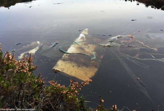 Cordages, utilisés par des pêcheurs, parmi les déchets accumulés, ile de Lyngøyna, Norvège