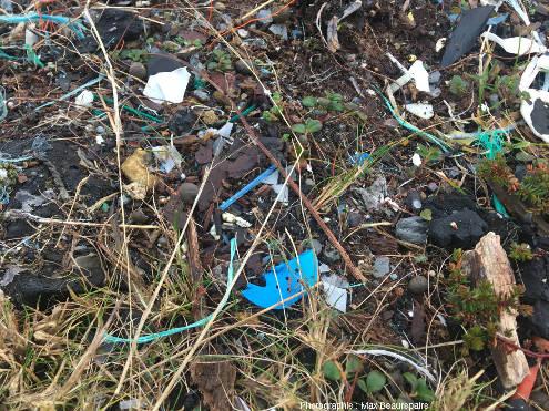 Exemples de fragments de petite taille trouvés sur le sol, ile de Lyngøyna, Norvège