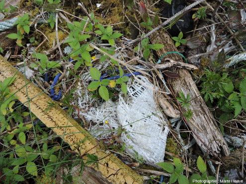 Autre exemple de vieux déchets intégrés au sol, dans l'ile de Sotra, Norvège