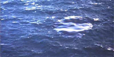 Nappe dérivante de fuel de l'Erika