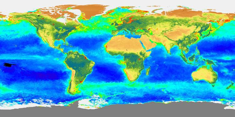 Carte de la répartition de biosphère globale durant le printemps 1998 (mars-mai 98)
