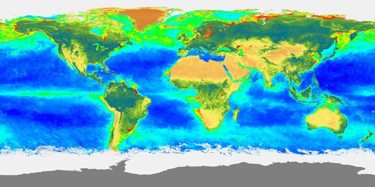 Carte de la répartition de biosphère globale durant l'été 1998 (juin 98 - août 98)