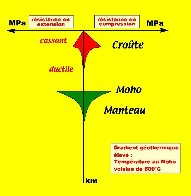 Profils rhéologiques en extension et en compression pour un gradient géothermique élevé