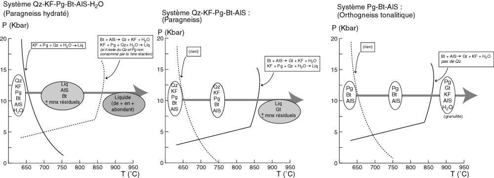 Comportement de trois systèmes simplifiés lors des réactions (4) et (5)