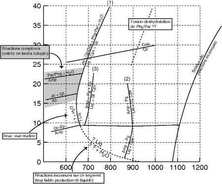 Quelques réactions impliquées dans la fusion partielle de roches basiques (avec suffisamment d'eau pour contenir des amphiboles)