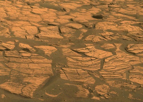 Détail de strates (vues par la tranche) du substratum