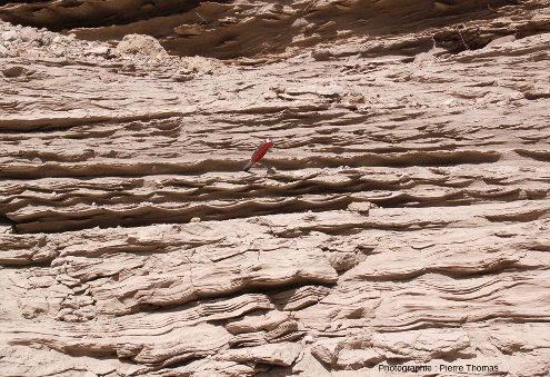 Affleurement terrestre constitué d'un ancien sable âgé de plusieurs milliers d'années où on voit que certaines couches sont comme festonnées (ancien lac glaciaire du Chili)