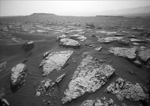 Surface de dalles de roches parcourues d'un étrange réseau polygonal: des fentes de dessiccation probables