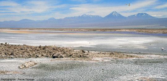 Exemple d'un milieu terrestre (le désert d'Atacama, au Chili) où l'on voit, du premier à l'arrière-plan (1) des fentes de dessiccation, (2) des croutes de sel et de gypse, (3) des plans d'eau très peu profonds, (4) des épandages de sables volcaniques provenant (5) d'une chaine de volcans