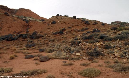 Détail d'un éboulis de rochers noirs (black boulders) photographié à l'entrée Ouest du Parc national de Capitol Reef, le long de la route SR-24