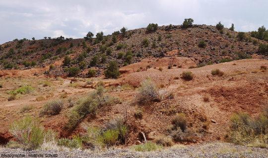 Terrasse de rochers noirs volcaniques posée sur les grès rouges de la formation Moenkopi, dans l'Ouest du Parc national de Capitol Reef (Utah)
