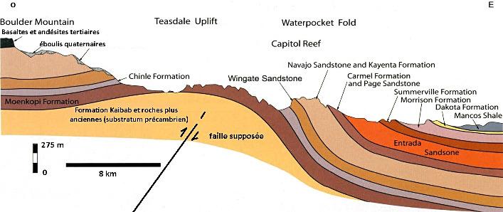 Coupe théorique du Waterpocket Fold, formant à l'Est une superbe structure monoclinale de grande ampleur disséquée par l'érosion