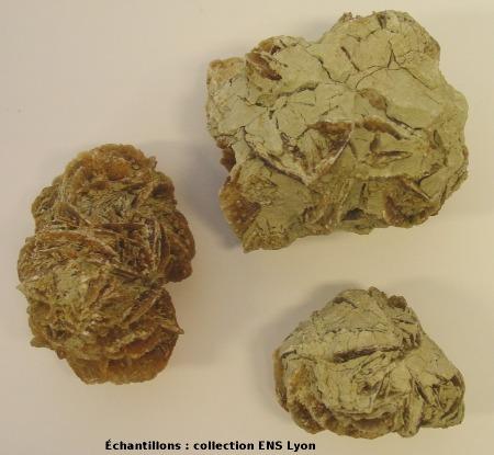 Rose des sables de Provence