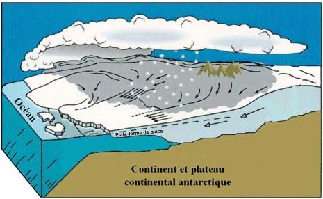 Schéma théorique de la genèse d'une plateforme de glace (ice shelf)