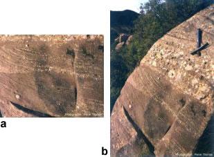 Stratifications obliques dans du Crétacé terminal des Corbières (Aude), avec détail