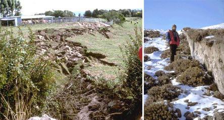 Exemples de manifestations de surface lors de séismes importants et récents en Nouvelle Zélande et Arménie