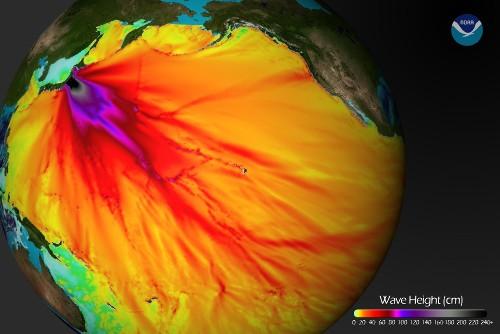 Hauteur en mer de la vague du tsunami du 11 mars 2011 dans le Pacifique
