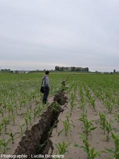 Une fissure, conséquence du séisme du 20 mai 2012, près de Mirabello (Italie)