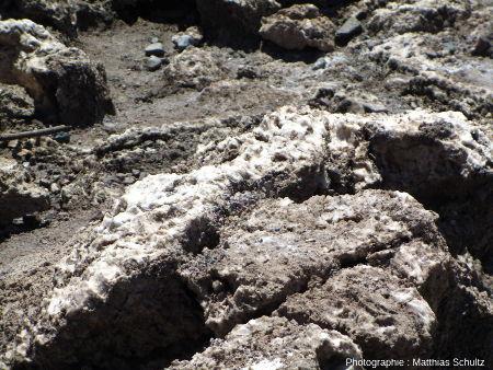 Détail des cristallisations de sel du terrain de golf du diable (Devil's Golf Course), Vallée de la Mort