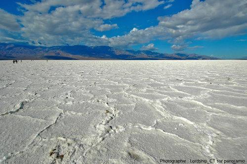 Croûte de sel à bordures polygonales en reliefs, Badwater, Death Valley, Californie